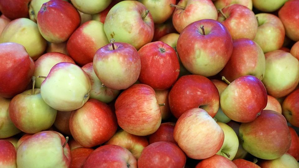 Fruit, Apple, Fruits, Kernobstgewaechs, Apfelernte