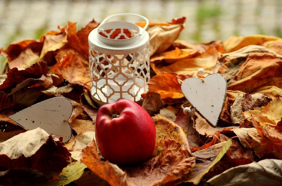 Autumn, The Autumn Scenery, Foliage, Apple, In The Fall