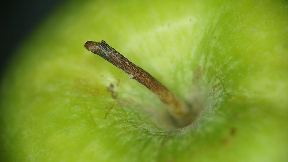Green, Apple, Fruit