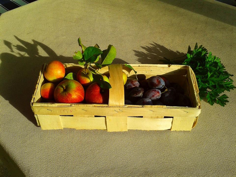 Fruit Basket, Fruit, Apple, Plum, Basket