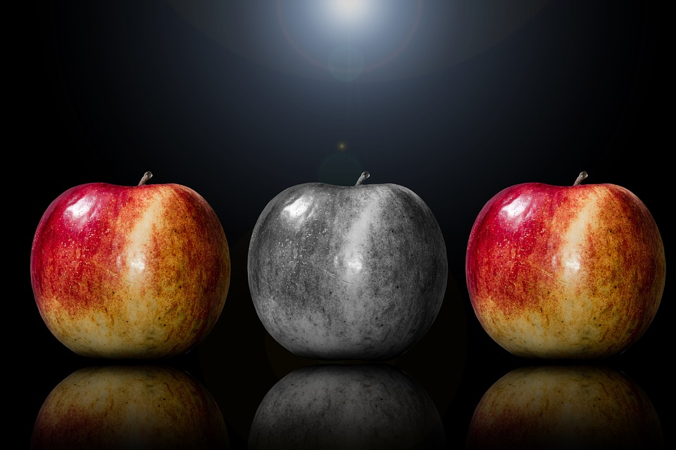 Apple, Fruit, Selection, Especially, Special Feature