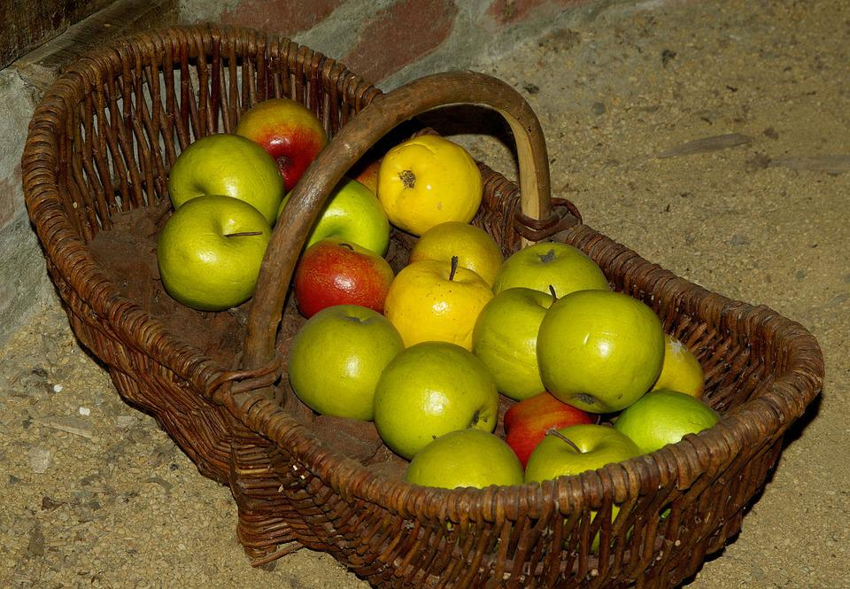 Basket, Apples, Collection