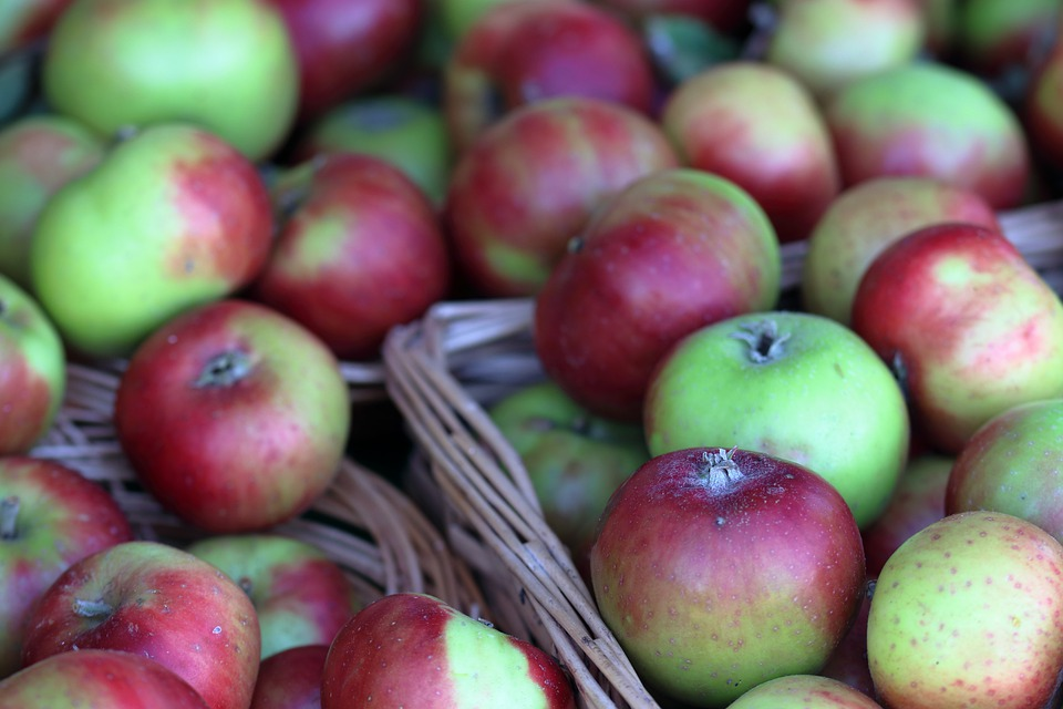 Apples, Harvest, Fruits, Fresh, Healthy, Ripe, Orchard