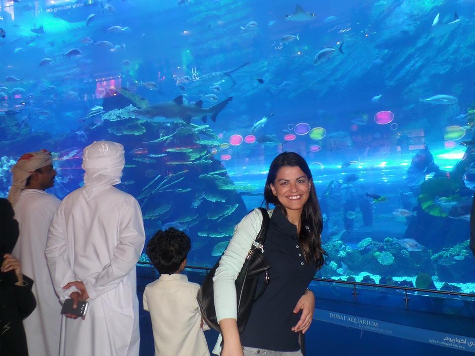 Aquarium, Laura, Fish