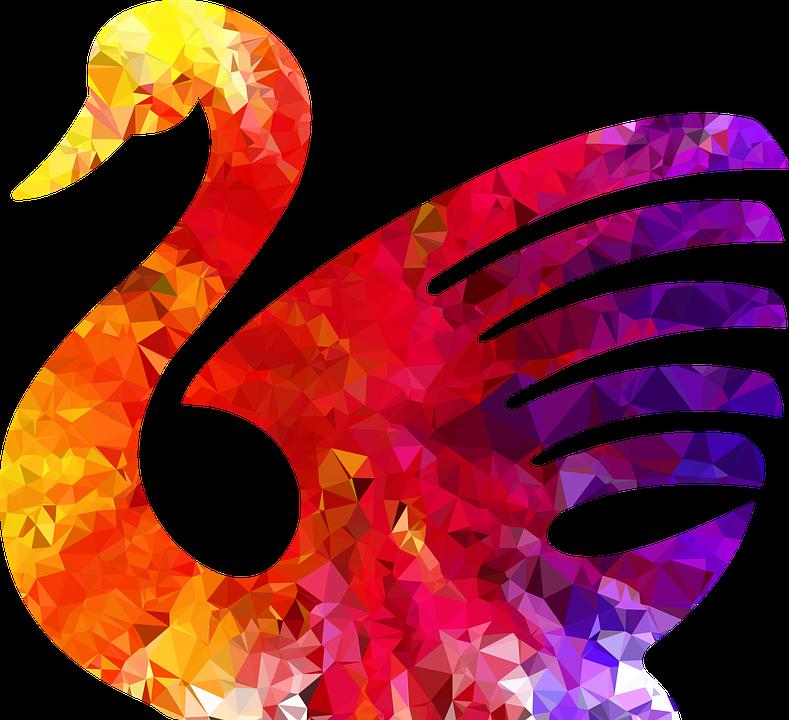 Swan, Bird, Animal, Aquatic, Water, Swim, Fly, Flight