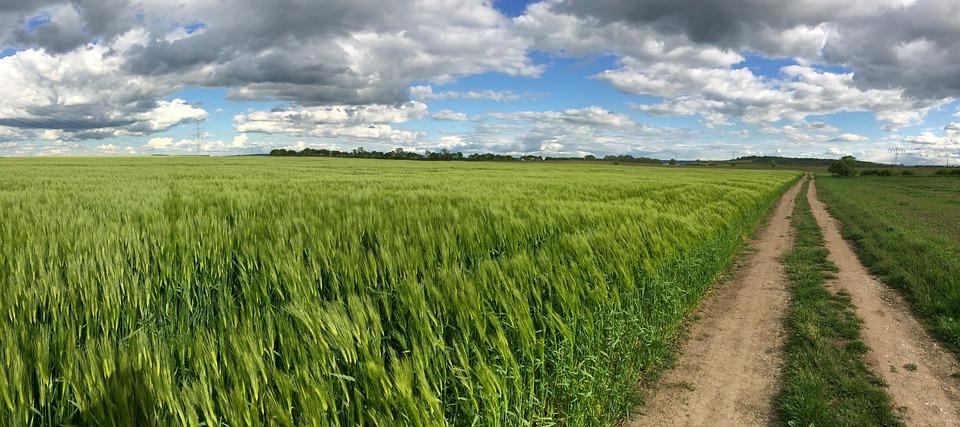 Away, Field, Lane, Landscape, Nature, Clouds, Arable