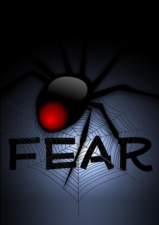 Cobweb, Web, Spider, Fear, Creepy, Arachnophobien