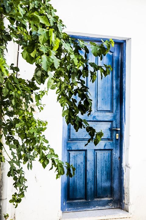Door, Front Door, Old, Building, Architecture, Leaves