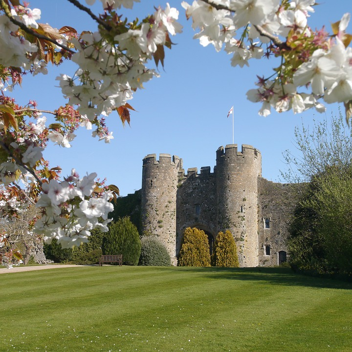 Tree, Castle, Architecture, Outdoors, Grass