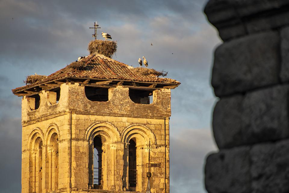 Architecture, Tower, Cloudy, Overcast, Birds, Nest, Old