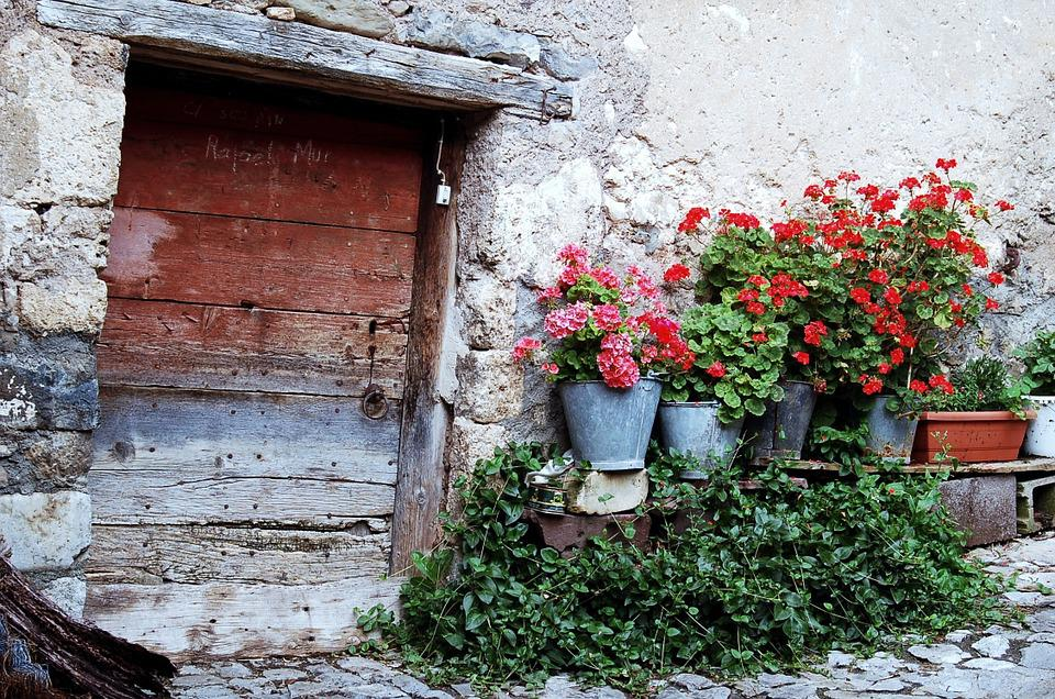 Old House, Door, Flowers, Architecture, Old, Input