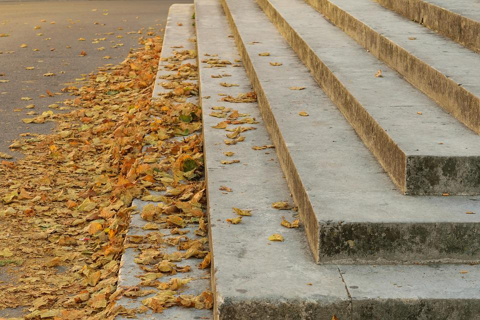 Market, Markets, Leaves, Fall, Architecture, Staircase