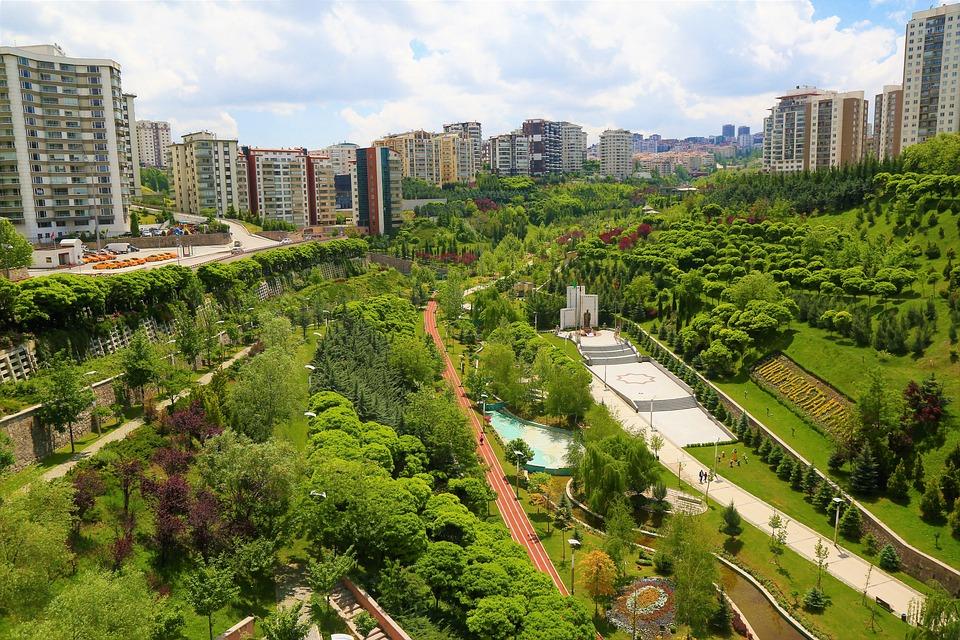 Park, Landscape, Green, City, Buildings, Architecture