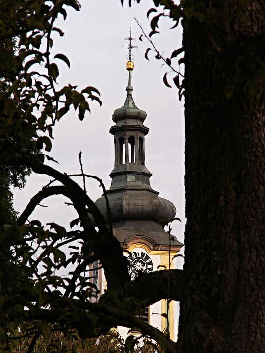Steeple, Old Tree, Tower, Architecture, Borovany, Trunk