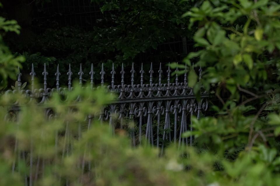 Fence, Wrought Iron, Metal, Ornament, Architecture