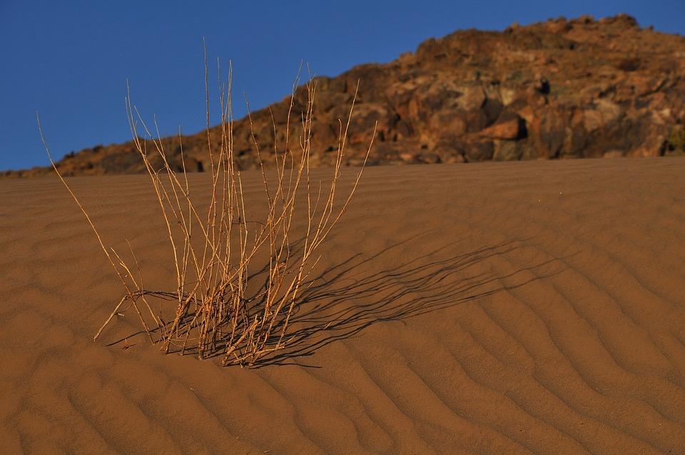 Desert, Dry, Sand, Arid, Hill, Nature, Landscape