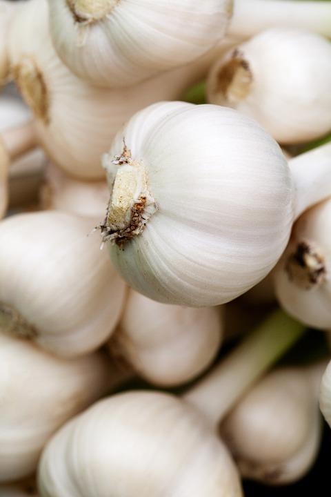 Aromatic, Background, Bulb, Condiment, Food, Fresh