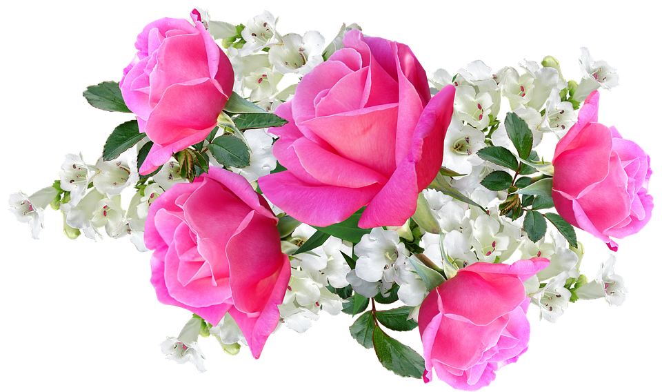 Flowers, Pink, Roses, White Penstemons, Arrangement