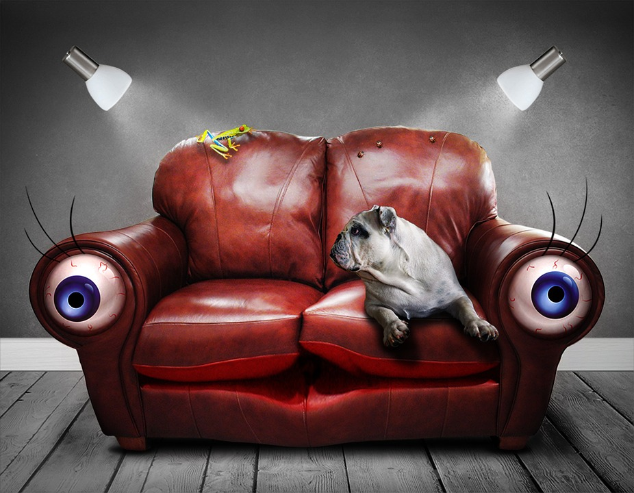 Sofa, Couch, Surreal, Eyes, Dog, Art, Artificial, Dream