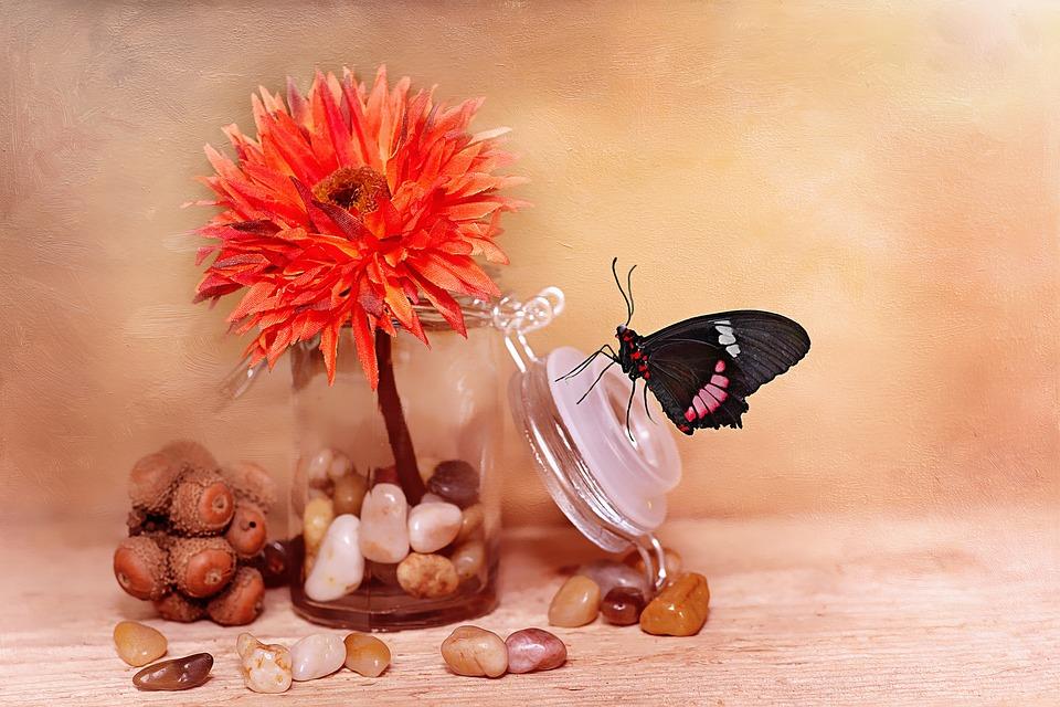 Flower, Art Flower, Blossom, Bloom, Orange