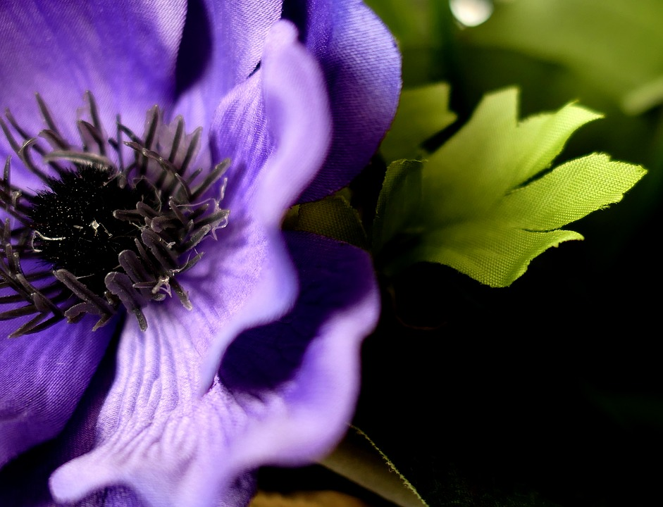 Art Flower, Flower, Nature, Plant, Garden, Floral
