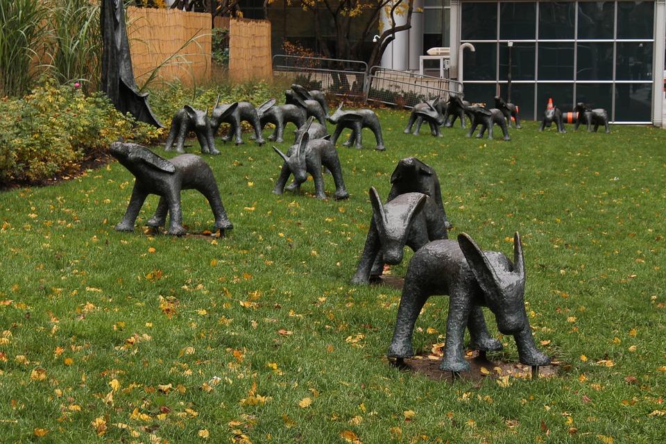 Art, Toronto, Canada, City, Grass, Installation