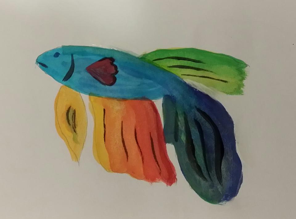 Watercolor, Fish, Guppy, Art, Drawing, Kids, Children