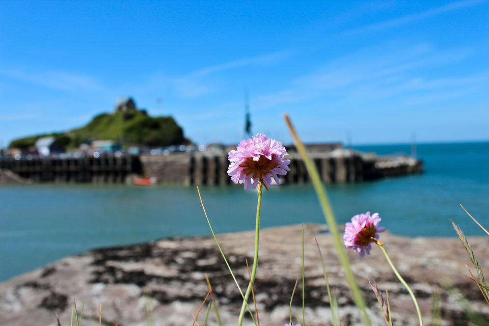 Ilfracombe, Verity, Damien Hirst, Sculpture, Art