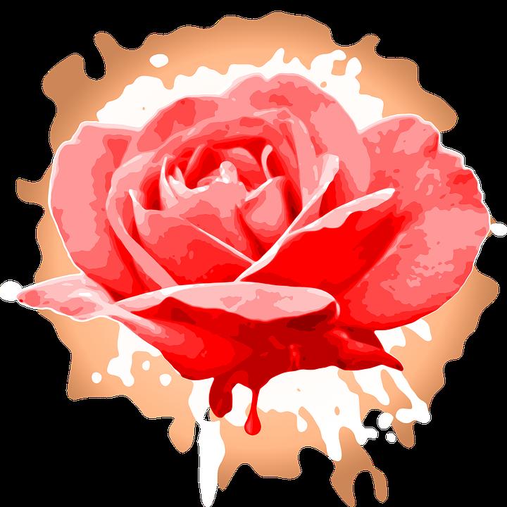 Rose, Art, Grunge, Design, Flower, Red, Petal, Digital