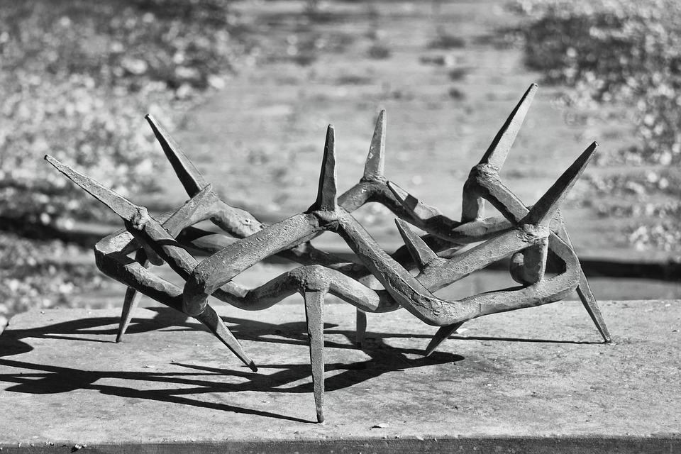 Crown Of Thorns, Plastic, Metal, Sculpture, Art