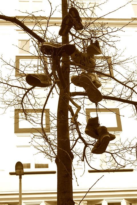 Shoe Tree, Street Art, Hamburg, Urban Art, Art