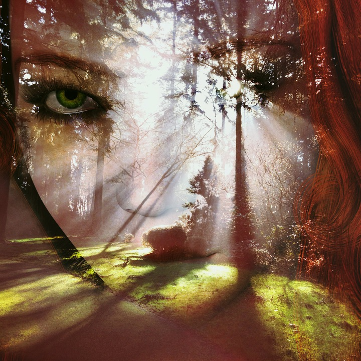 Free Photo Artfully Artistic Face Surreal Woman Forest ...