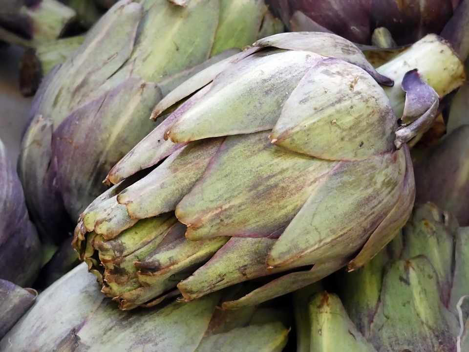 Artichoke, Violet, Vegetable, Purple, Composite, Edible