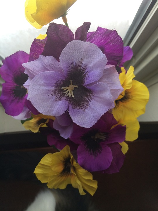 Artificial, Flowers, Cloth, Pansies, Floral, Decoration
