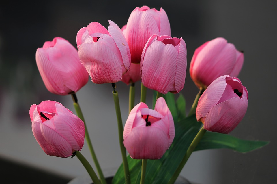 Artificial Flowers, Tulips, Vase, Colorful, Decoration