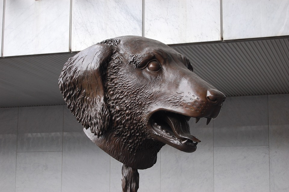 Sculpture, Museum, Mexico, Art, Statue, Dog, Artist