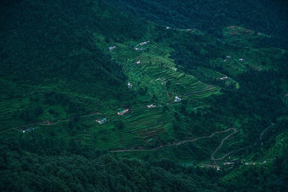 Plateau, Agriculture, Asia, Asian, Cereal, Countryside