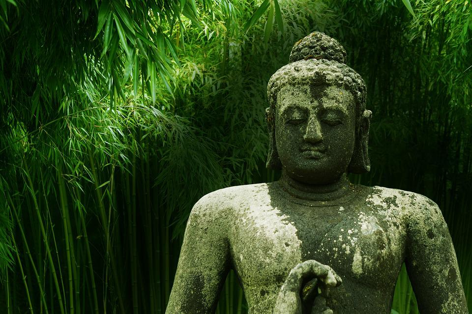 Buddha, Bamboo, Meditation, Zen, Asia, Buddhism