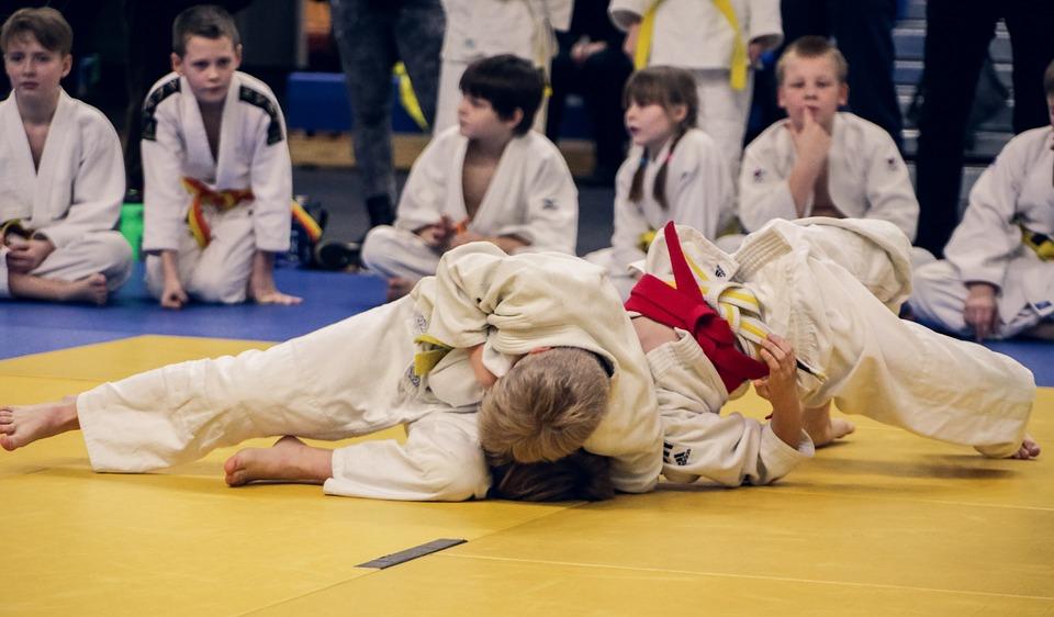 Judo, Athlete, Sport, Belt, Martial, Sports, Combat