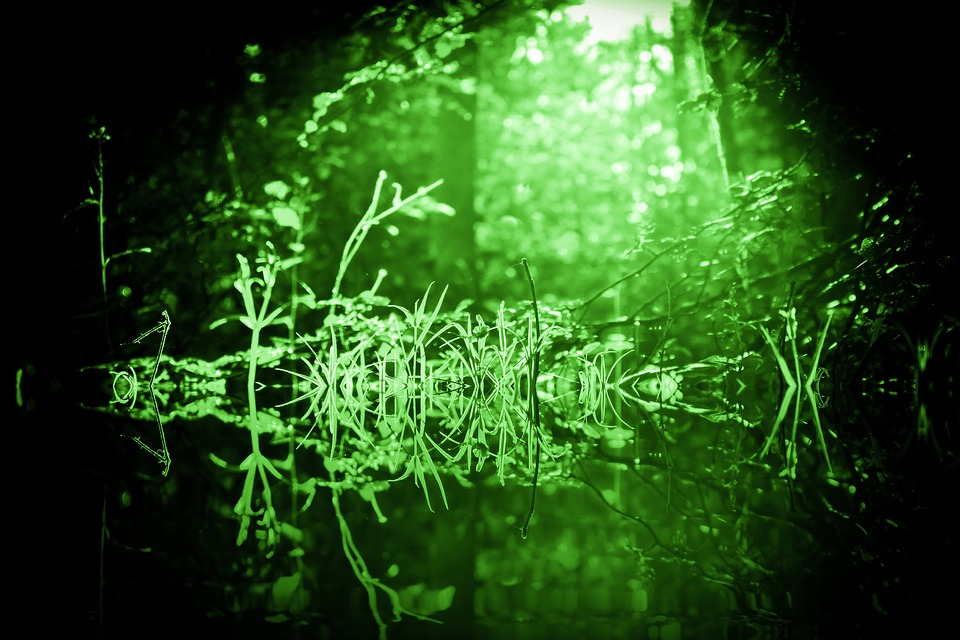 Green, Mystical, Fantasy, Mood, Atmosphere, Mysterious