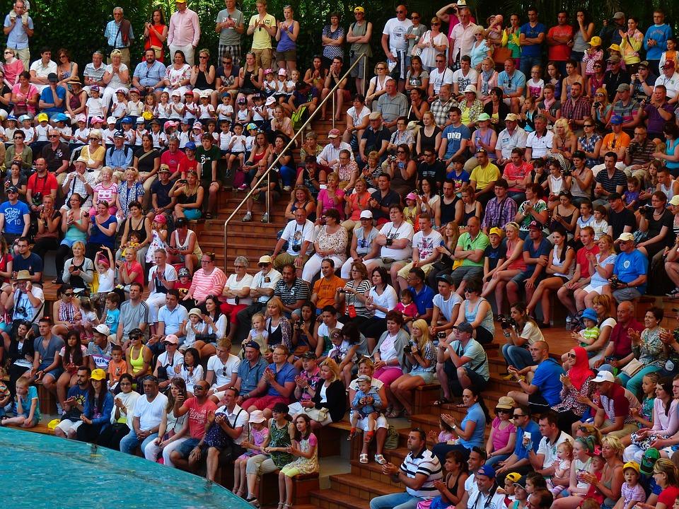 Viewers, Auditorium, Show, Arena, Water Basin
