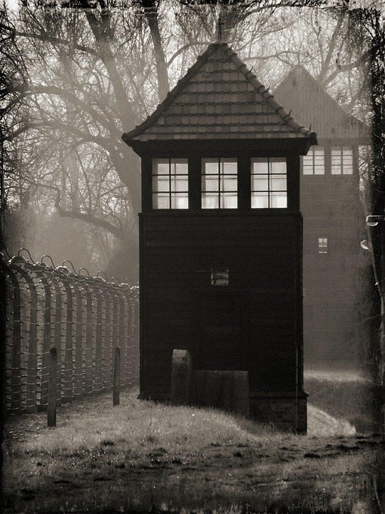 Auschwitz, Camp, Concentration Camp, History