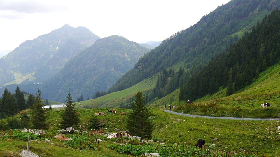 More, Holiday, Landscape, Mountains, Austria, Tyrol