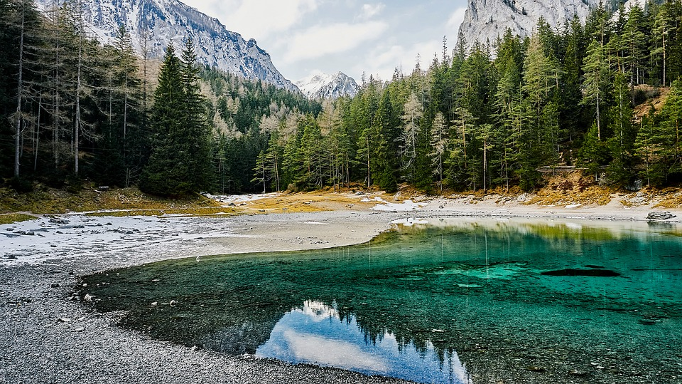 Free Photo Austria Mountains Trees Snow Forest Landscape Max Pixel