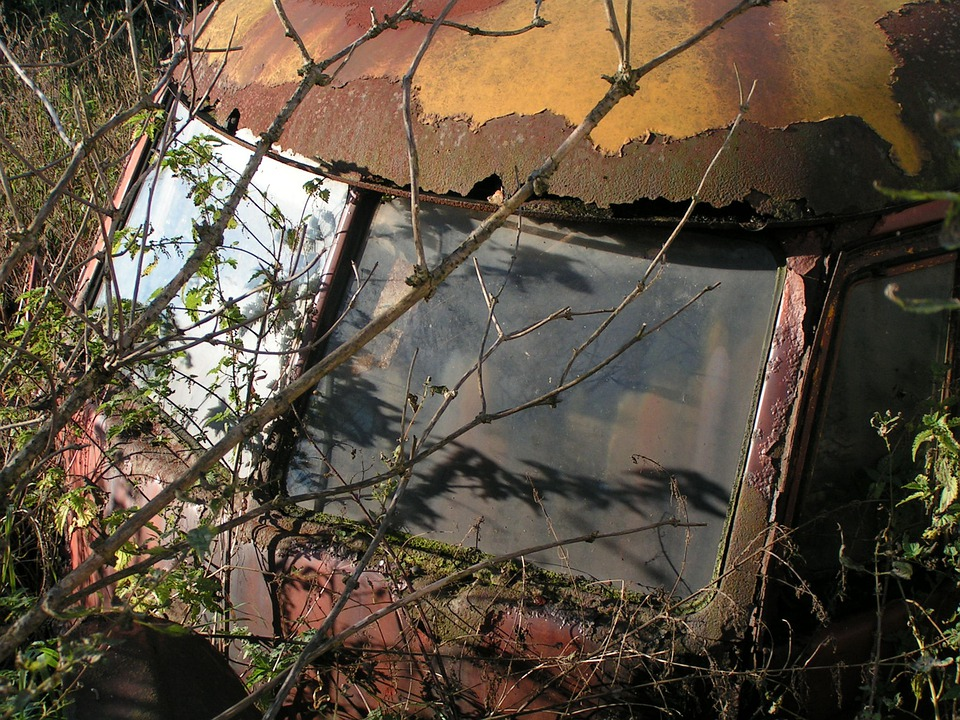 Auto, Old, Scrap, Rusted, Vw, Oldtimer, Vehicle, Bush