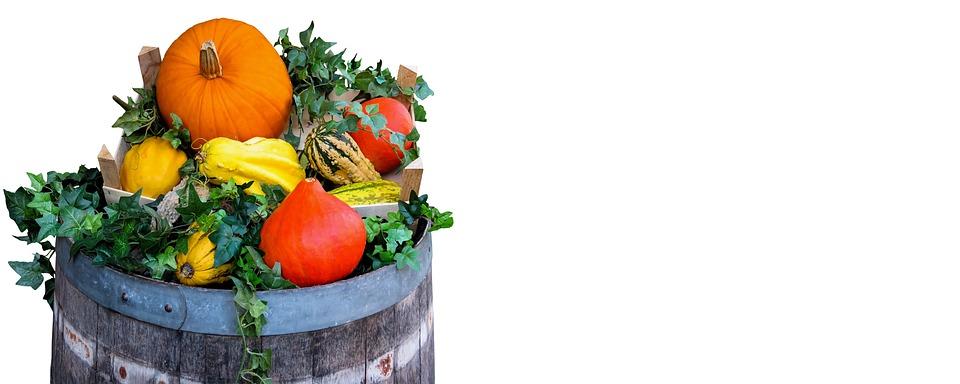Nature, Harvest, Autumn, Agriculture, Pumpkin, Barrel