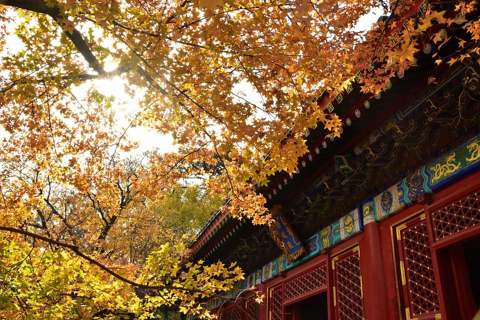 Ancient Architecture, Beijing, Xiangshan, Autumn