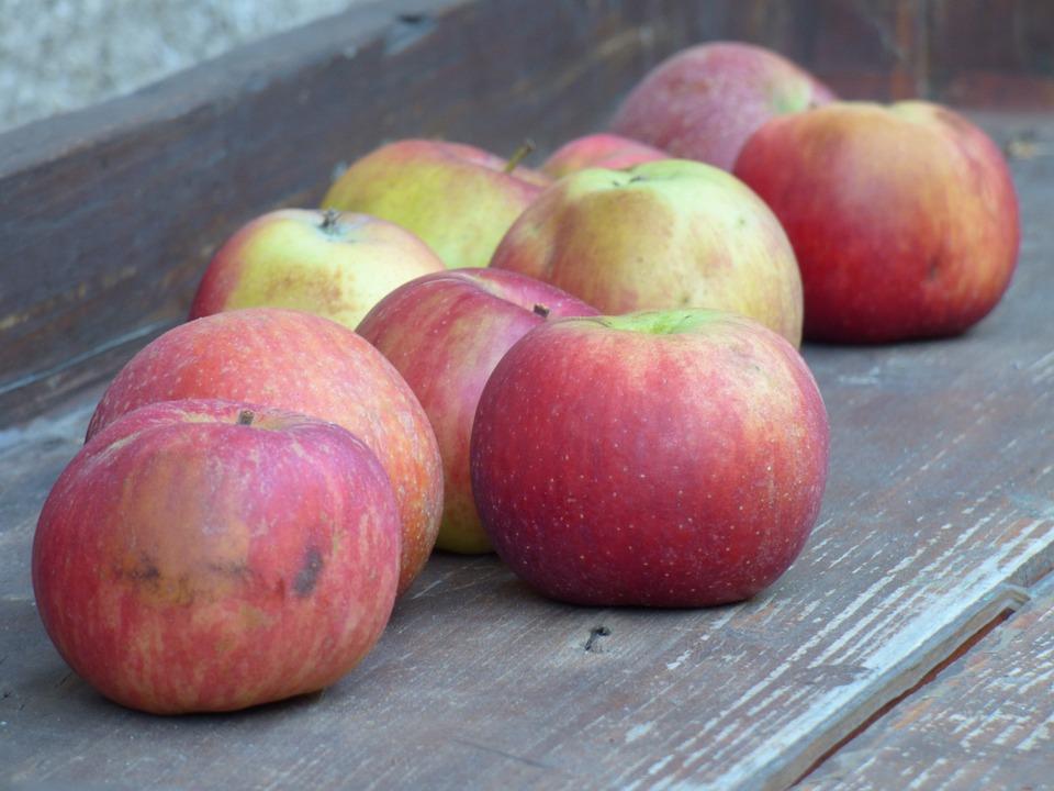 Fruit, Apples, Autumn, Harvest, Healthy, Organic