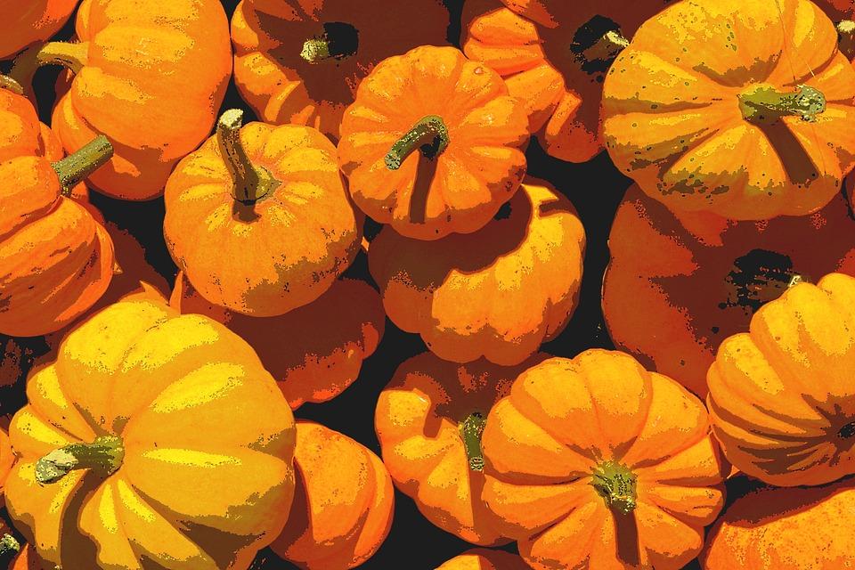 Autumn, Autumn Colours, Fall Color, Leaves