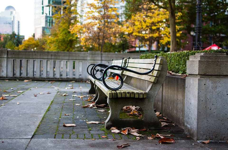 Park, Plaza, Bench, Leaf, Fall, Autumn
